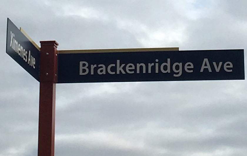 Street sign at the corner of Brackenridge and Ximenes Avenues, UTSA Main Campus.